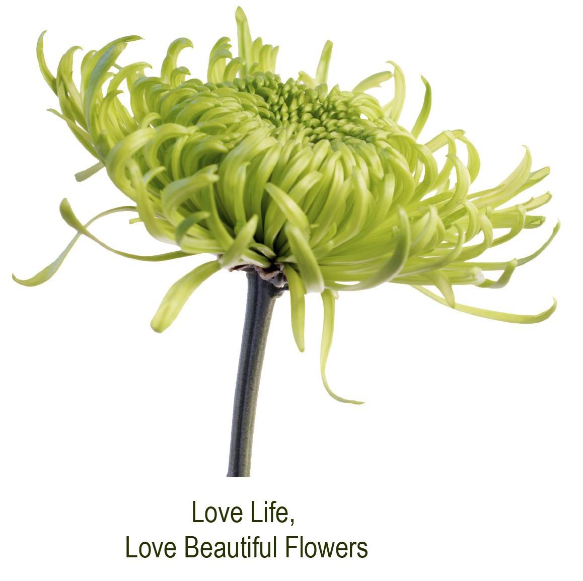 Ena's Florists